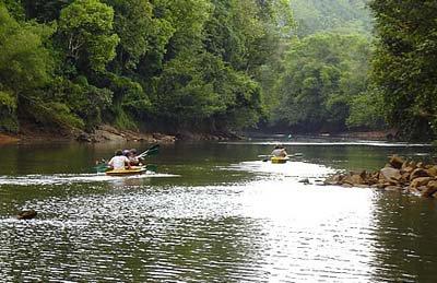 Экологический туризм: что это такое?
